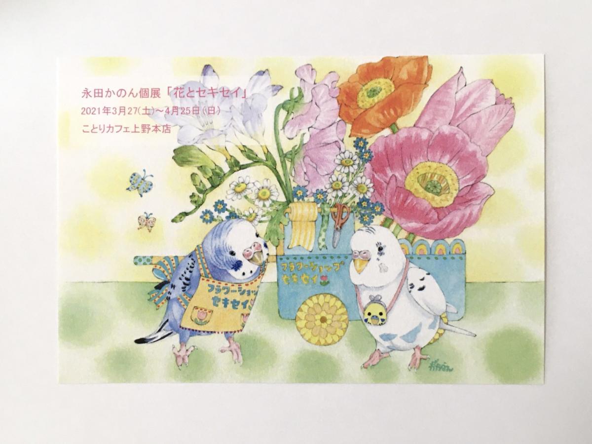 個展「花とセキセイ」DM