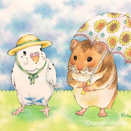 帽子と日傘